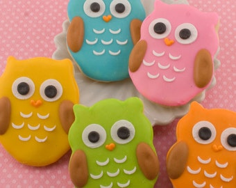 Owl Cookies, MINI SIZE - 2 dozen