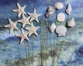 Seashells and Crystals and Stars - 20 stems for Wedding Bouquets or Centerpieces