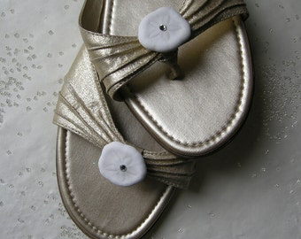Shoe Clips - Crystal Sand Dollars