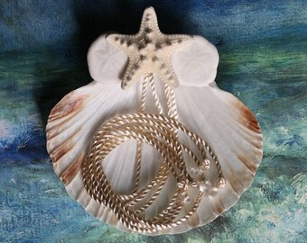 Seashell Ring Pillow - Knobby Star - Seashell Starfish Sand Dollar Ring Bearer's Pillow