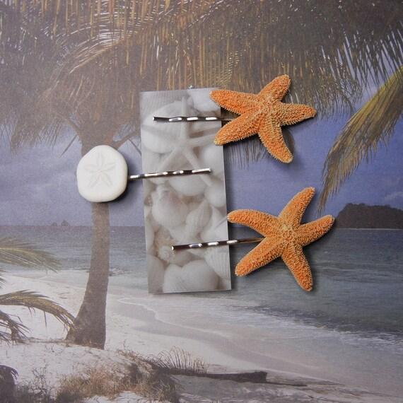 Sugar and Sand - Starfish and Sand Dollar Bobby Pins