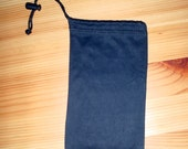 Cell phone cleaner and carrying case