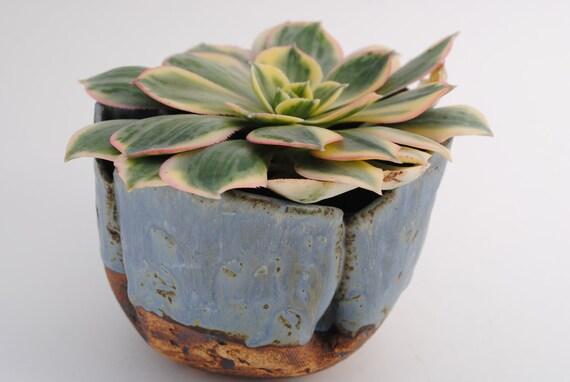 ceramic planter pot garden planter bowl plant garden art vessel