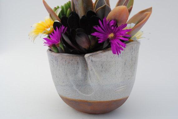ceramic planter bowl garden planter pot stoneware dish garden