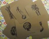 personalized veggie noteset
