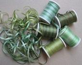 Daintree Rainforest mix - 15 metres of 2mm variegated silk ribbon