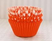 Assorted Orange  Cupcake  Liners Pack 2 (45)