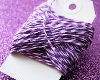 Lilac Purple and White Twine 15 yards