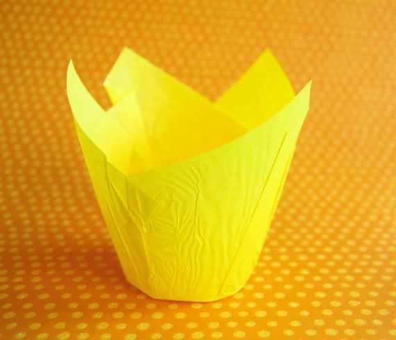 Yellow Folded Cupcake Liners or Baking Cups (24)