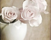 Pink shabby chic winter romantic women faded pale 3 three soft white tan love texture flowers roses photograph - Fine Art Photography Print