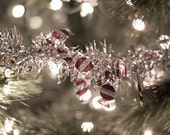 Christmas Photography abstract holiday art festive decor under 10 winter red green silver pale light lights sparkles sparkly photograph art