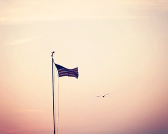 Spring Summer American Flag 4th of July Fourth bird flying minimal pink white purple red stripes blue patriotic - Fine Art Photography Print
