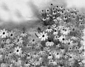 Black and White Digital Art Print Flower Garden Landscape