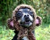 Dog Hat - Monkey Dog Hat - Pet Hat - Pet Hood - Costume - Bear Hat