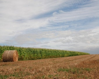 Fall Autumn Farm Landscape, France - 10x8 - hay rolls, field, straw, wheat, rustic, rural, country