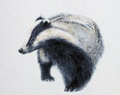 Badger Walk - original artwork in watercolour