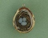 Robin's Nest Quail Egg