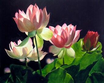 Flower Print Poster, Floral Decor, signed prints, fine art prints, Home Decor,