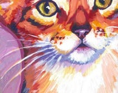 Abyssinian Cat--Small Print
