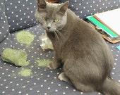 Catnip--Graycie Maes Particularly Potent Compost Grown Catnip