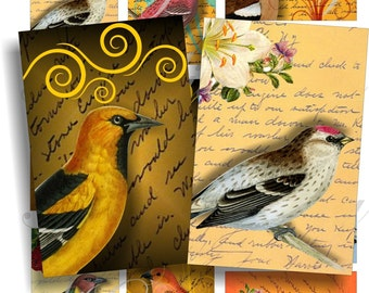 Fantastic vintage birds images for cards, ACEO, ATC, scrapbook and more Digital Collage Sheet 3 X 2 inch No.381
