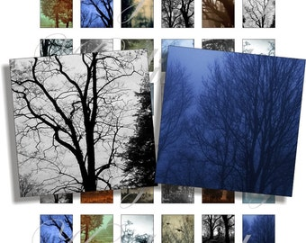 Dark trees 1x1 inch for pendant, scrapbook and more Digital Collage Sheet No.674