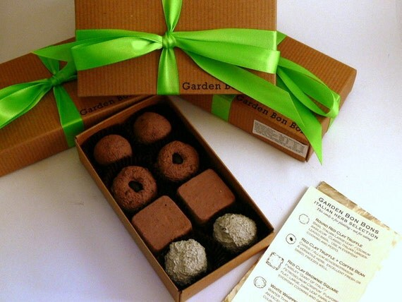 Earth Day - not Seed Bombs - Garden Bon Bons  - Italian Herbs Selection