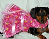 The Best Friends Forever Harness Dress Comes in 5 sizes xxxsmall to Medium larger ones Custom