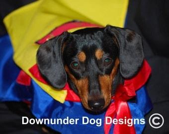 Super weenie costume custom sizes and custom lettering