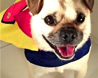Super Puggy Costume