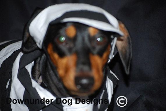 Convict Dog costume