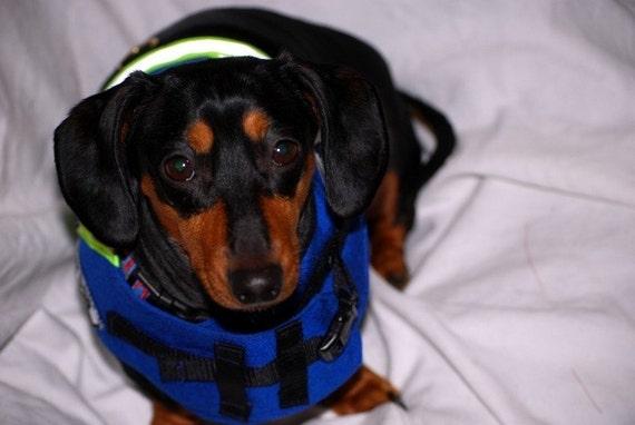 Service Dog harness vest  Seizure Alert Dog Custom Sizes