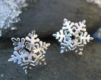 Silver Snowflake Posts