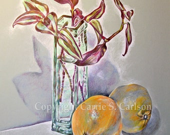 Still Life with Two Oranges - print of original drawing 8x10