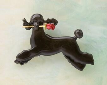 B428 Black Standard Poodle