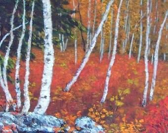 Autumn Leaves Birch Trees Trunks Meadow Evergreens Rocks Orange Gold Yellow Red 11x14 original acrylic painting