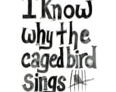 I Know Why the Caged Bird Sings... 8 x 10 Glossy Print