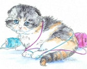 SCOTTISH FOLD Cat 11x14 Original Watercolor on Ink Print Matted Ready to Frame