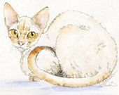 CORNISH REX Cat 11x14 Original Watercolor on Ink Print Matted Ready to Frame