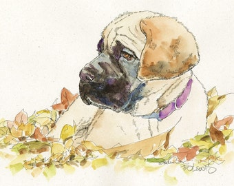 MASTIFF AUTUMN Original Watercolor on Ink Print 11x14 Matted Ready to Frame