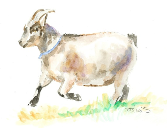 PYGMY GOAT Original Watercolor Matted 8x10 Ready to Frame