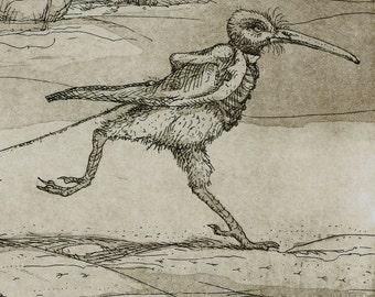 Original Aquatint Etching - Flightless Bird