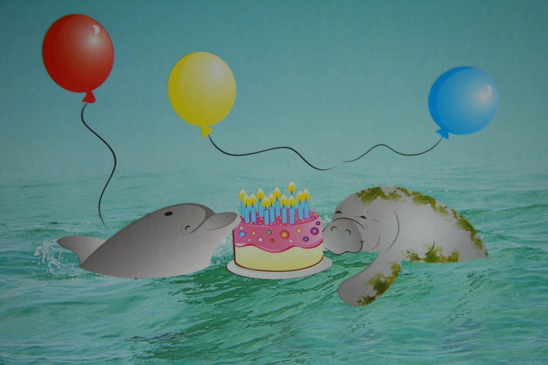 Happy Birthday Dolphin Cake