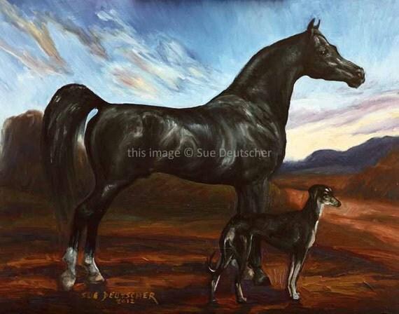 Arabian Horse Black Stallion black Saluki dog art by ...