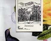 Custom Ex Libris Book Plates - Mountain Scene