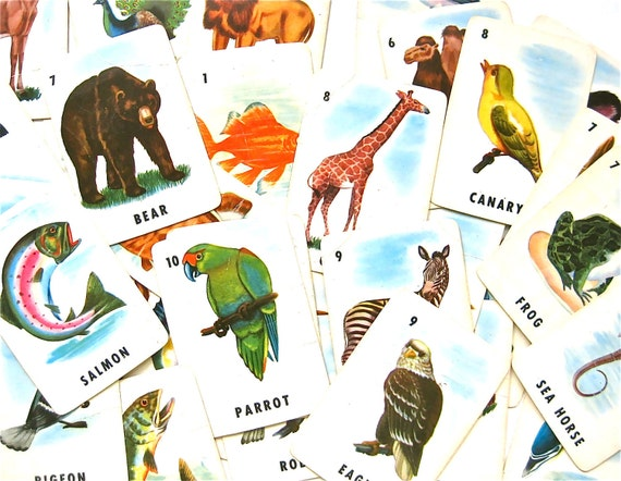 Wildlife on cards vintage ed u cards animal bird fish game for Illinois game and fish