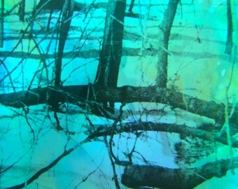 Magic Trees II