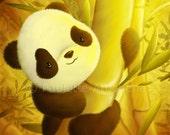 Bamboo Cuddles - Satin Gloss 8 x 10 Print