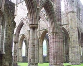 Tintern Abbey Wales 8x10 Photo 11x14 mat ruin stone arches architectural misty abandoned church religious