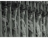 The Splendor of Kings  8x10 signed Photo 11x14 mat Yorkshire cathedral stonework royalty carved gothic majestic regal church england